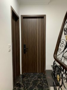 cửa gỗ nhựa sd41